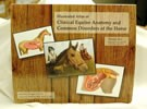 Illustrated Atlas of Clinical Equine Anatomy Vol 2